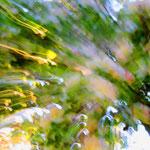 Natursimfonie von Walter J. Pilsak