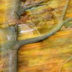 Herbststurm von Walter J. Pilsak