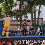 ウータンフェスタ2013 DDTプロレス試合
