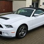 Mustang GT 500 / Weiss met