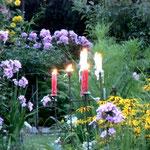in dem Garten