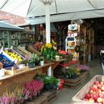 du kannst dort Obst kaufen oder
