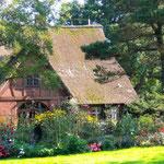 Einen Tag im Arboretum Ellerhoop