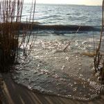 auf dem Rückweg...die Flut, nasse Füße bekommen