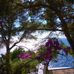 Costa de Los Pins der Bick in Richtung Cala Bona