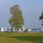 Holzbootregatta 2011