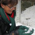 Schneeeeee     hinter der Eisbahn ;-)