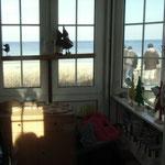 Fenster geschaut