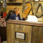im Gespräch mit dem Pferdedoktor