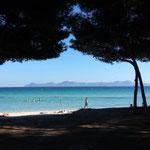 Am Strand von Alcudia