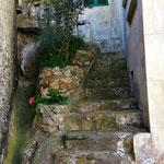 Cala Figuera ...bedeutet Feigenbucht, ganz klar... wegen der vielen Feigenbäume ;-))) für mich der schönste Ort auf Mallorca