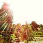 Sonnenstrahlen eingefangen