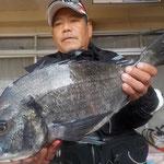 3月26日 磯釣りで村上さん ガバチヌ50㎝