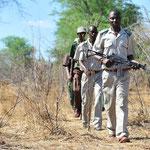 Eine Patrouille von Wildhütern begleiten wir in sengender Hitze....