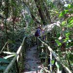 Unterwegs im PNN Otun Quimbaya
