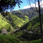 Auf dem Weg durch die Berge der Kaffeezone - foto by chapoleratours