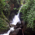 Wasserfall im Nebelwald - Valle del Cocora - foto by chapoleratours