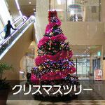 施工事例:クリスマスツリー
