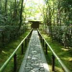大徳寺 高桐院 入口