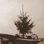 Maritime Weihnacht