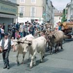 Autrefois le Couserans - Les transporteurs de grumes