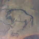 Peinture rupestre de la grotte de Niaux