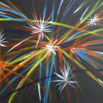 Titel: Feuerwerk