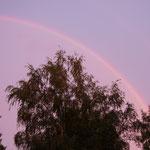 Paimio - nach dem Regen