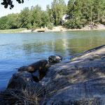 In den Schären vor Turku