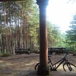Wandern und Biken im Pfälzerwald