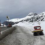 Snow Rabbit in Zürs, Flexenpass. Winterwanderweg Zürs-Lech