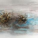 Herbst: Baumhasel