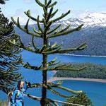 Vue sur la lac Conguilio, rando de 20kms !