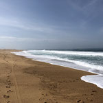 genug Wellen für Surfer