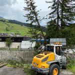 Forstarbeiten für Wildbach- und Lawinenverbauung am Zürsbach