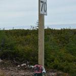 """""""Kopflose"""" werden den Highway nicht überleben :-D"""