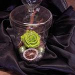 Glas mit stabilisierter Rose