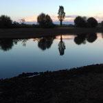 L'étang depuis la  fontaine
