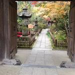 2015年鎌倉の紅葉 安国論寺