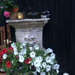 Der Springbrunnen als Blumentopf.