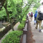 小川の横を歩いて