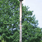 Turmfalken-Nisthilfe