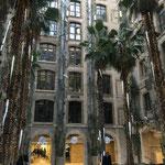 La Place des Palmiers