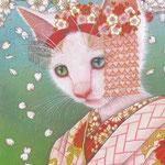 舞妓~桜~