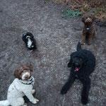 Rani, Leo, Nina und Yella