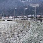 Aufforstung Wildhecken entlang BOB Bahnstrecke Interlaken / Wilderswil