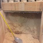 Bauhoftischlerei Absaugung reinigen und Holzlager räumen