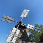 Moulin de Lautrec / Au mas de Janita ©