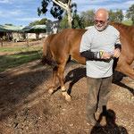 Manfred und Pferd