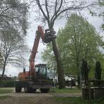 Kraan boom